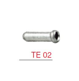 TE 02